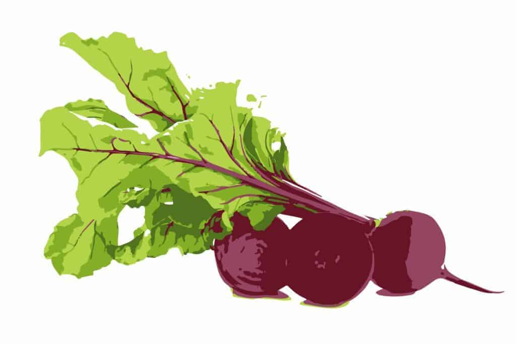 organic-superfoods-cheap-beetroot