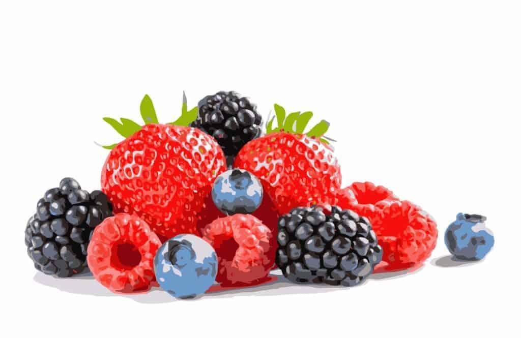 organic-superfoods-cheap-berries