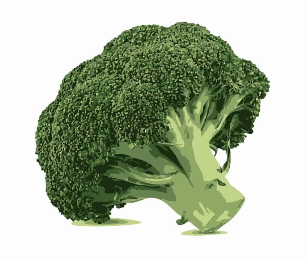 organic-superfoods-cheap-broccoli
