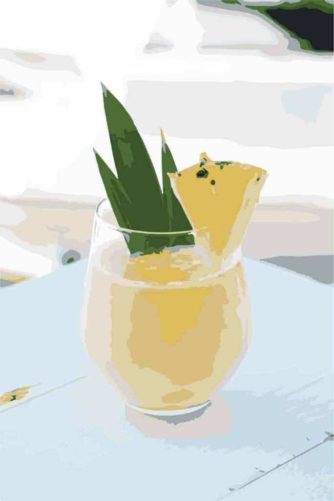juicing-guide-beginners-recipe-orange-one